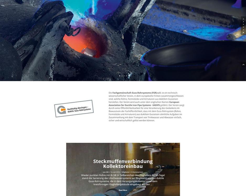 Homepage Internetseiten Webpräsenz EADIPS FGR
